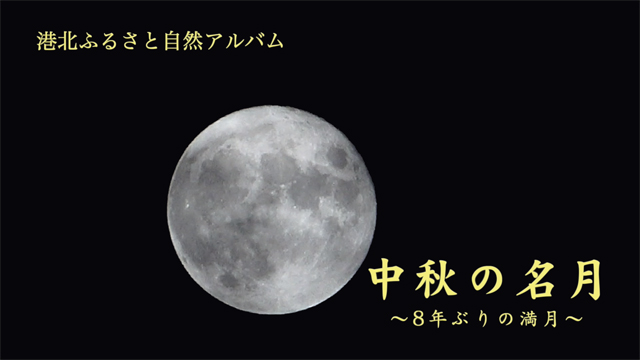 港北ふるさと自然アルバム「中秋の名月」